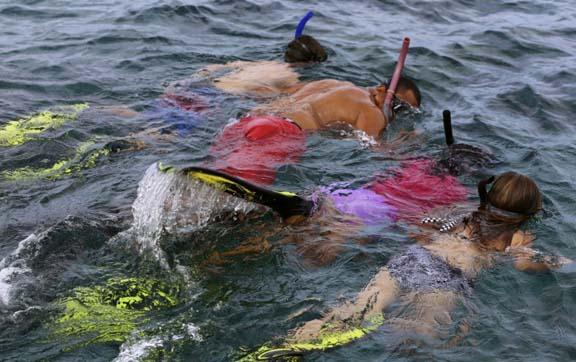 tides-reach-resort-fiji-families