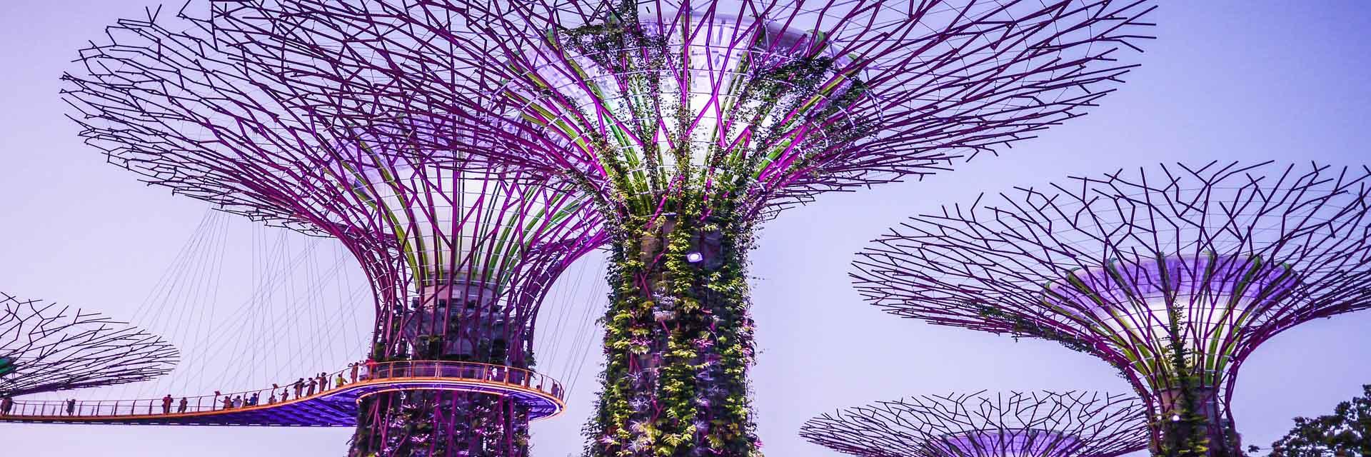 garden-at-the-bay-singapore