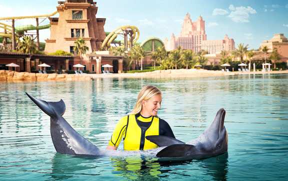royalswim-dophin-bay-atlantis