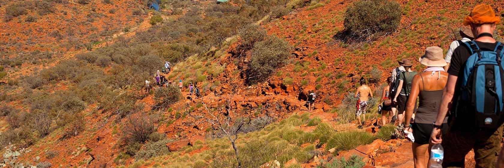 walking-safari-australias-red-centre