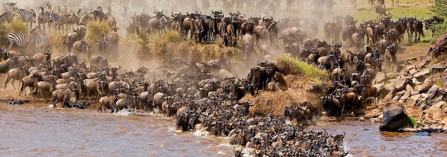 tanzania-east-africa-serengeti-migration